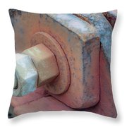 Inexhaustible Throw Pillow