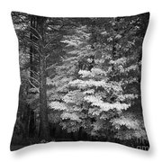 Infared Photograph Throw Pillow