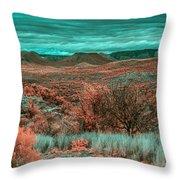 Infrared Arizona Throw Pillow