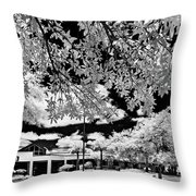 Infrared Indian River State College Hendry Campus #6 Throw Pillow