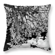 Infrared Indian River State College Hendry Campus #8 Throw Pillow
