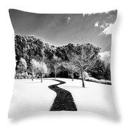 Infrared Parkland Throw Pillow