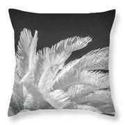 Infrared Sago Palm Throw Pillow