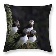 Ingolfshofthi Puffins Iceland 2855 Throw Pillow