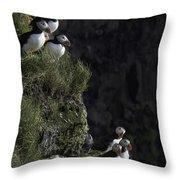 Ingolfshofthi Puffins Iceland 2898 Throw Pillow