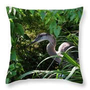 Injure Blue Heron Throw Pillow