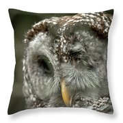 Injured Owl Throw Pillow
