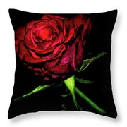 Inked Rose Throw Pillow