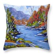 Inland Water Throw Pillow