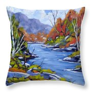 Inland Water Throw Pillow