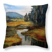 Inlet In Indian Lake Throw Pillow