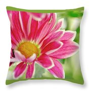 Inmost Feelings. Throw Pillow