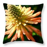 Inn Bloom Throw Pillow