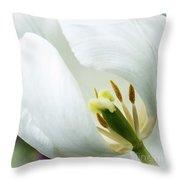 Inner Essence Throw Pillow
