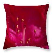 Inner Fire Throw Pillow