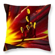 Inner Glow 2 Throw Pillow
