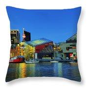 Inner Harbor Throw Pillow