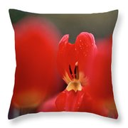 Inner Value Throw Pillow