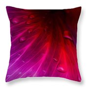 Inner Vanity Throw Pillow