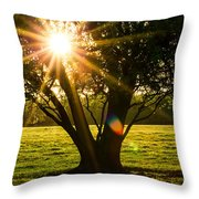 Innerlight Throw Pillow