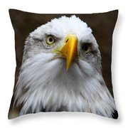 Inquisitive Eagle Throw Pillow