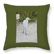 Inquisitive Egret Throw Pillow