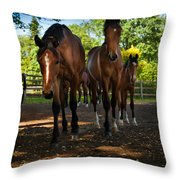 Inquisitive Horses Throw Pillow