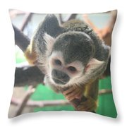Inquisitive Monkey Throw Pillow