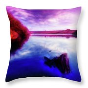 Inquisitive Swan Throw Pillow