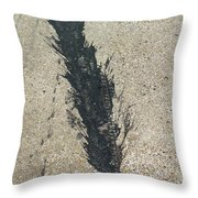 Inroad Throw Pillow