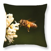 Insect - Bee - Honey I'm Home Throw Pillow