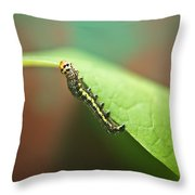 Insect Larva 3 Throw Pillow