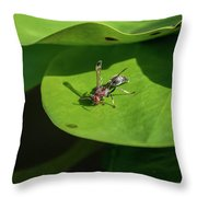 Insect On Lotus Leaf Throw Pillow