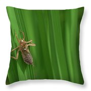 Insect Stain On The Leaf Throw Pillow