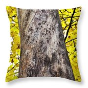 Insect Writing Throw Pillow