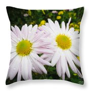 Inseparables Daisies Throw Pillow