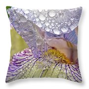 Inside A Bearded Iris Throw Pillow