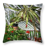 Inside The Greenhouse Throw Pillow