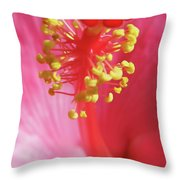 Inside The Hibiscus Throw Pillow