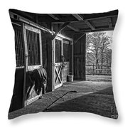 Inside The Horse Barn Black And White Throw Pillow