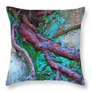 Insinuation Throw Pillow