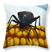 Inspecting Beetle Throw Pillow