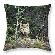 Inspector Throw Pillow