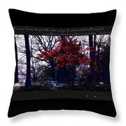 Inspiration 1 Throw Pillow