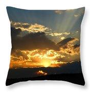 Inspiring Beauty Throw Pillow