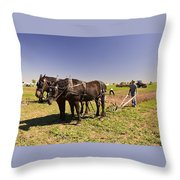 Instructing The Horses Four  Throw Pillow