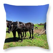 Instructing The Horses Two  Throw Pillow