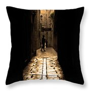 Insular Calm Throw Pillow by Andrew Paranavitana