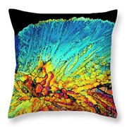 Insulin Crystals Light Micrograph Throw Pillow