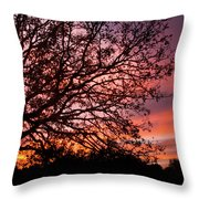 Intense Sunset Tree Silhouette Throw Pillow